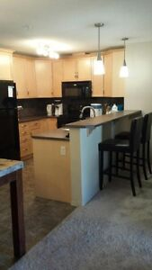 2 bedroom+den executive suite urbanvillage on whyte $1495 Edmonton Edmonton Area image 2