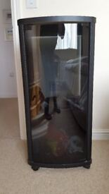 MODERN GLASS FRONTED STORAGE CABINET FOR DISCS ETC