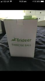 Trideer Swiss silver exercise ball 65cm