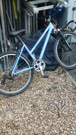 Claudbutler trial ridge bike