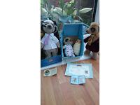 Baby meerkat for Sale in Scotland | Hobby, Interest