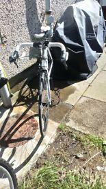 Carrera Virtuoso Road Bike 2015 - 51, 54cm