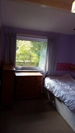 Room available in Old Catton. Wifi and parking