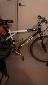 Gt palomar mountain bike