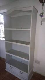 Tall free standing book/display case