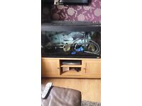 fluval fish tank for sale with loads of extras