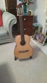 Giannini Acoustic guitar