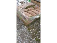 42 rolls of turf fresh cut