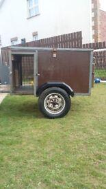 dog trailer springer lab lurcher