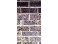 LBC Brindle bricks