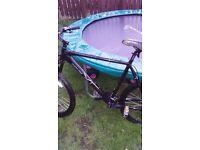 Mens mountion bike