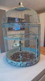 REALLY HUGE SHABBY CHIC BIRD CAGE RRP £249 DISPLAY - WEDDING - 90CM TALL