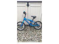 Boys Ridgeback Bike