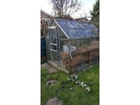 Greenhouse. 6ft x 10.5 ft. Aluminium frame fully glazed. Good condition. Buyer to dismantle