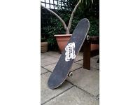 Adult / Kids SKATEBOARD / The Prevalence Skateboard
