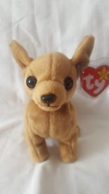 Tiny the Chihuahua - ty Beanie Baby Collectible