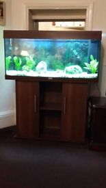 Large Rectangular 180lt Fish Tank, Pump and Stand