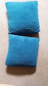 Cushions x2