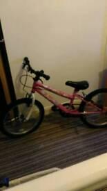 Kids single speed mountain bike