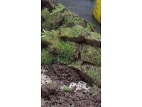 FREE Large Quantity approx 20 square metres of Topsoil Turf Grass Lawn Garden