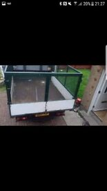 Tipper cages