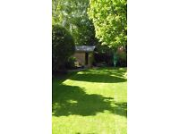 Eastbourne Grass cutting gardening patio drive cleaning garden structures sheds