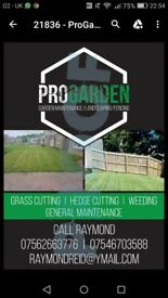 GRASS CUTTING SERVICES / POWER WASHING