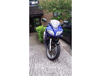 URGENT SV650 2004 for sale