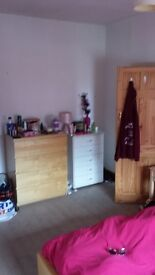 DOUBLE ROOM in female professional house share. Great location - Kirkstall LS53JQ.