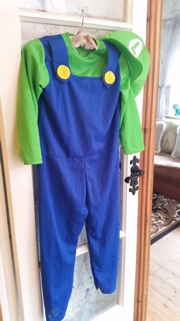 Supermario Luigi costume