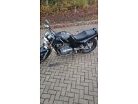 Suzuki VX800 for sale.