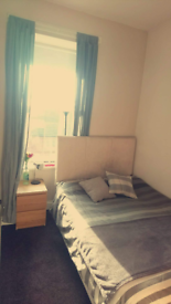 Single spacious room to rent £375 including all bills.