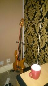 Aria 5 string bass great bass to play