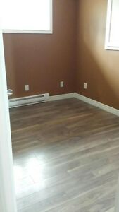 2 Bedroom Apartment St. John's Newfoundland image 7