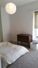 large 3 bed house + spare room available now!