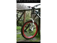 WANTED triple clamp downhill forks