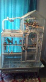 Liberta Angel parrot cage (stone colour)