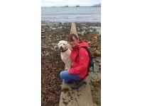 Dog Walker Northampton, Dog Walking Northampton, Pet visits, Pet Sitting Northampton, Pet taxi