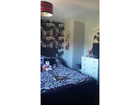 two bedroom house looking for three bedroom available from 10th dec