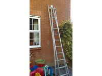 Window cleaning ladder and buckets