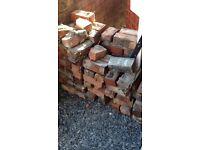 Free Bricks URGENT PICK UP tomorrow (40 red house bricks) first come first serve