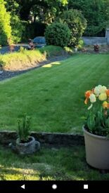 GARDEN AND TREE MAINTENANCE @J.D.S GARDEN AND TREE CARE. SEE IN ADD FOR WHAT WE PROVIDE.