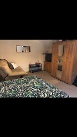 Big double room in tooting