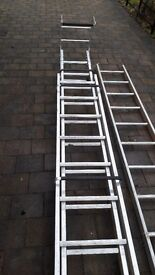 Trade Roof Ladder and single ladder.