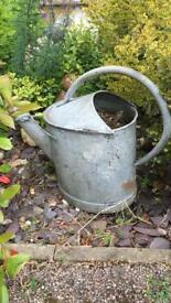 Old buckets and watering can planters