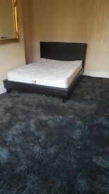 Spacious Double / Triple room available in Hillsborough