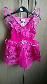 Disney fairies costume