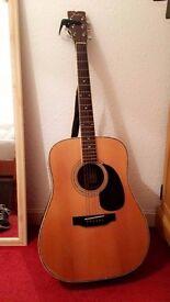 Acoustic Fender Guitar model F-65