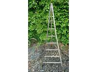 Vintage fruit pickers tripod ladders
