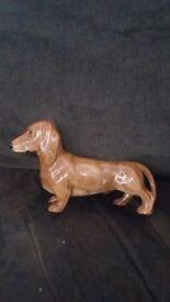 Beswick dachound dog figure a1 condition angus area
